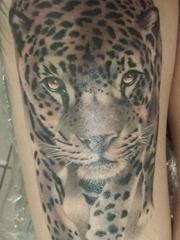 腿上的写实风格豹子纹身图片