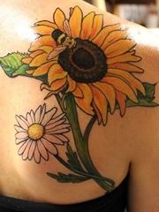 彩色植物颜料纹身女性喜欢的一组漂亮的花卉纹身图案