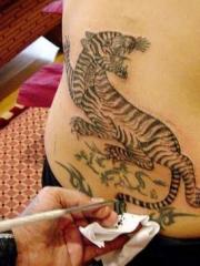 美国影星安吉莉娜背后老虎纹身图案