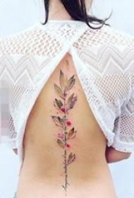 彩色渐变植物和简单线条小动物纹身图案