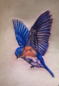 腰部彩色小鸟展翅纹身图案