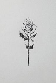 黑色线条素描简约唯美玫瑰纹身手稿