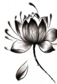 黑色素描创意个性水墨唯美莲花纹身手稿