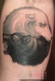男生手臂上黑灰点刺技巧羊和狼纹身图片