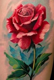 芳香四溢的彩绘植物素材简单线条花朵纹身图案