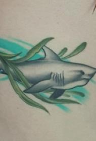 男生侧腰上彩绘渐变简单线条植物水草和鲨鱼纹身图片
