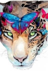 彩绘水彩泼墨创意文艺蝴蝶豹子纹身手稿