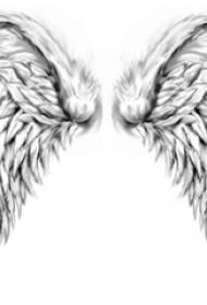 黑灰素描点刺技巧描绘的创意霸气精致翅膀纹身手稿