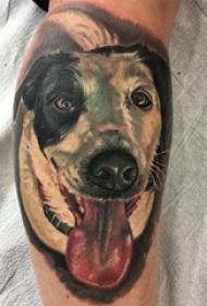 男生手臂上彩绘抽象线条小动物宠物狗纹身图片