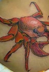 女生背部彩绘水彩素描创意3d螃蟹纹身图片