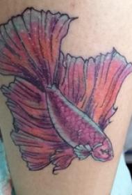 女生小腿上彩绘渐变简单抽象线条小动物鱼纹身图片