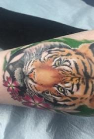 女生小腿上彩绘水彩素描霸气经典老虎动物纹身图片