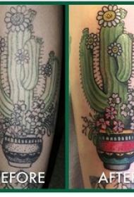 男生手臂上彩绘水彩素描文艺仙人掌纹身图片