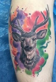 鹿头纹身男生手臂上鹿头纹身图片