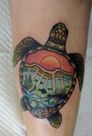 龟纹身男生小腿上彩色的乌龟纹身图片