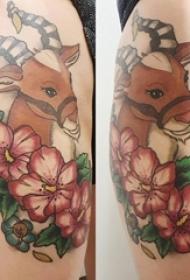 女生大腿上彩绘渐变简单线条植物花朵和小动物鹿纹身图片