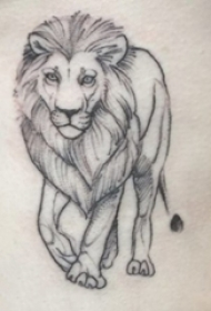 霸气的黑灰点刺简单抽象线条小动物狮子纹身图片