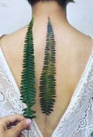 女生背部彩绘水彩素描创意文艺树叶纹身图片