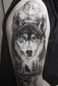 男生大臂上黑色点刺月亮和小动物狼纹身图片