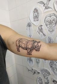 女生手臂上黑色线条创意犀牛动物纹身图片