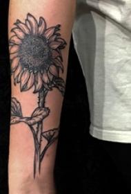 女生手臂上黑色点刺抽象线条植物向日葵纹身图片