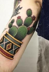 男生手臂上彩绘渐变几何简单线条植物仙人掌纹身图片