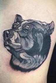 熊纹身 男生侧腰上黑色的熊纹身图片