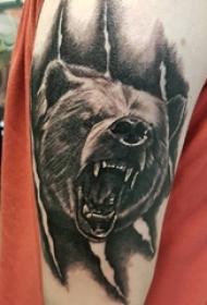 百乐动物纹身 男生手臂上黑色的熊纹身图片