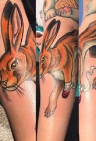 垂耳兔子纹身 女生手臂上彩色的兔子纹身图片