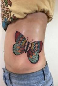 百乐动物纹身 女生侧腰上彩色的蝴蝶纹身图片