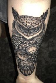 纹身猫头鹰 男生手臂上黑灰纹身猫头鹰图片