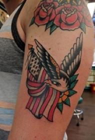 双大臂纹身 男生手臂上彩色的老鹰纹身图片