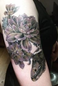 睡莲花纹身 女生手臂上睡莲花纹身图片