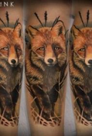 彩色狐狸纹身 男生手臂上彩色狐狸纹身图片