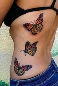 3d蝴蝶纹身 女生侧腰上彩色的蝴蝶纹身图片