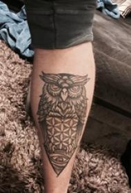 百乐动物纹身 男生小腿上黑色的猫头鹰纹身图片