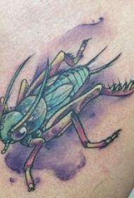 百乐动物纹身 男生胸部彩色的蟋蟀纹身图片