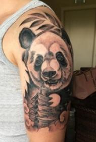 熊猫纹身图 男生大臂上黑色的熊猫纹身图片