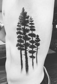 纹身黑色 男生侧腰上黑色的大树纹身图片