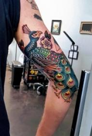 孔雀纹身图片 女生手臂上孔雀纹身图片
