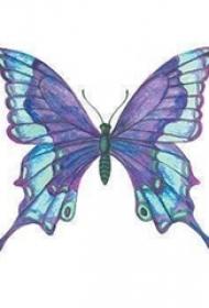 蝴蝶图纹身手稿 精致的彩色的蝴蝶纹身图片