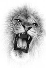 狮子头纹身手稿 黑灰纹身狮子头纹身手稿