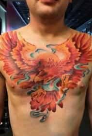 纹身火凤凰 男生胸部彩色的凤凰纹身图片