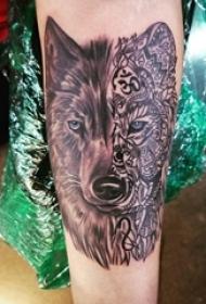 百乐动物纹身 男生手臂上拼接狼头纹身图片
