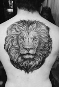 狮子头纹身 男生背部狮子头纹身霸气图片