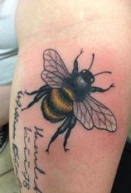 小动物纹身 男生手臂上彩色的蜜蜂纹身图片