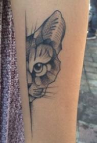 百乐动物纹身 女生手臂上素描的猫咪纹身图片