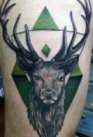 麋鹿角纹身 多款彩绘纹身素描麋鹿角纹身图案