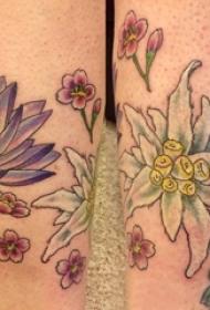 花朵纹身 女生小腿上花朵纹身彩色图片