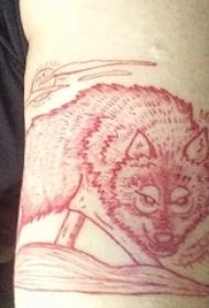 手臂纹身图片 男生大臂上红色的狼纹身图片